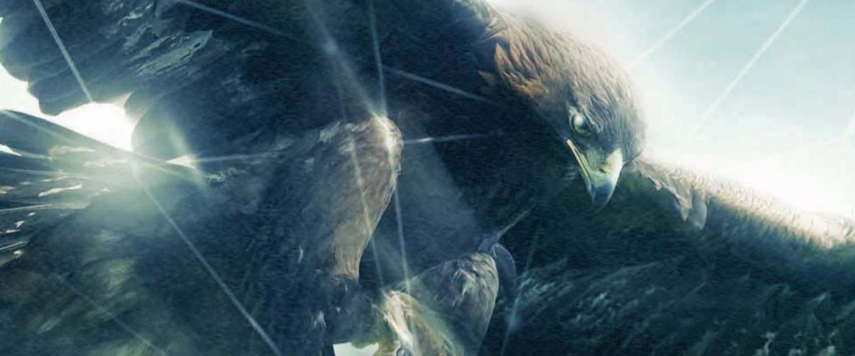 Assassin's Creed Film Aigle – Banniere